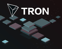 Tron Foundation on Lucien Chen: Chen was a technical leader, not a co-founder; was dismissed for fraud