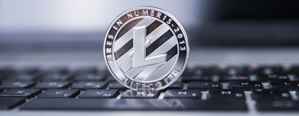 $778 LTC transaction costs user $17,500 in transaction fees