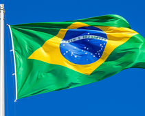 Brazilian State Launches Blockchain Platform for Government Contract Bids