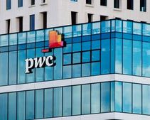 The expert does not see anything strange in the fact that PwC accepts bitcoins